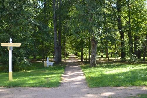 парк усадьбы Берново